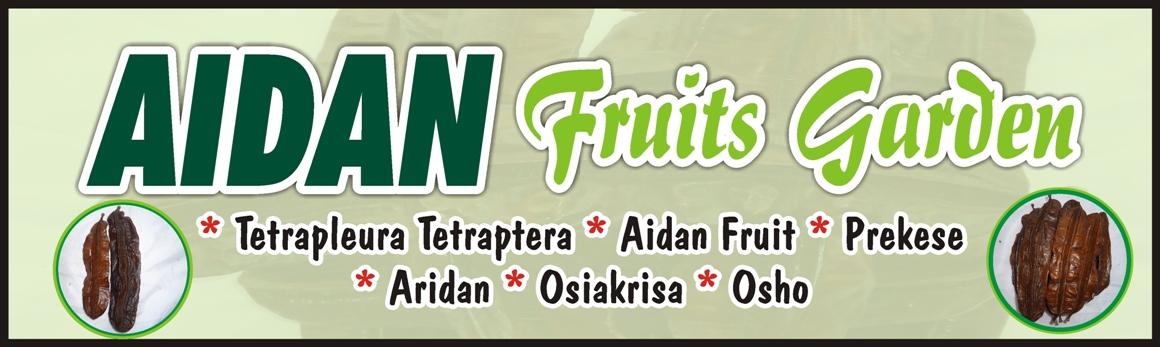 Aidan Fruits: Tetrapleura Tetraptera - 10 Pods in One Pack