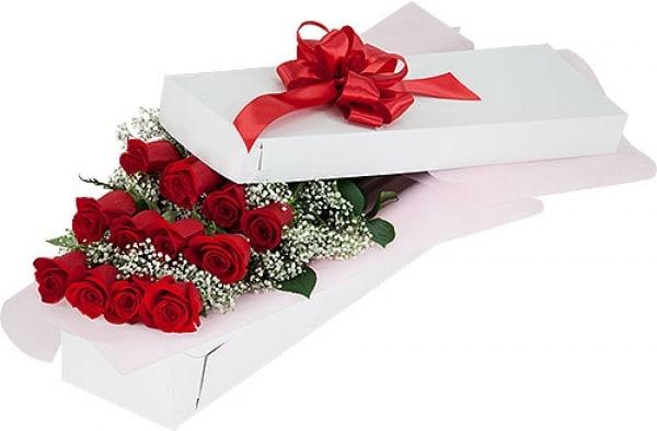 /1/2/12-Long-Stem-Red-Roses-3915969_1.jpg