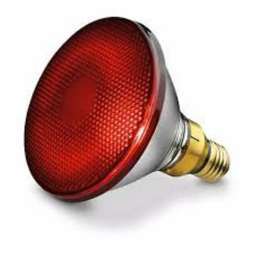 /1/5/150W-Infrared-Lamp-Bulb-7897109.jpg