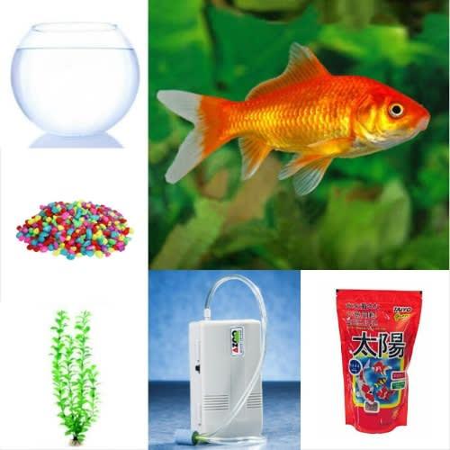 /A/-/A-Comet-Aquarium-Goldfish-Fish-bowl-Complete-Kit-5370745_3.jpg