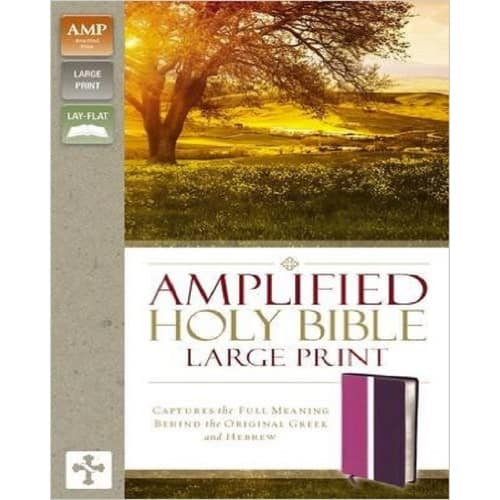 Amplified Holy Bible, Large Print : Captures the Full Meaning Behind the  Greek and Hebrew