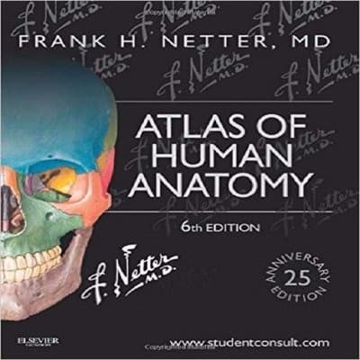 /A/t/Atlas-Of-Human-Anatomy-7893879.jpg