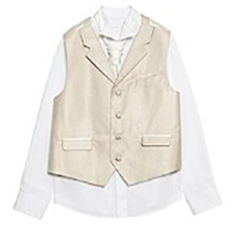 /B/o/Boys-Taupe-Striped-Waistcoat-Set--Age-16-1801110.png