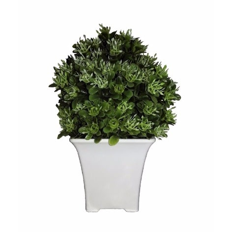 /D/e/Devon-Artificial-Plant-in-Plastic-Pot-19cm---Baby-Green-5978042_2.jpg