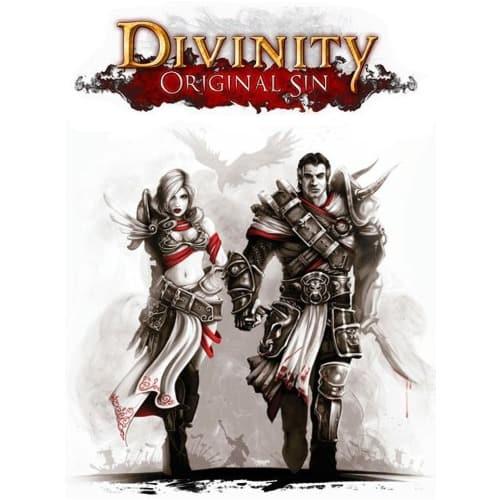 /D/i/Divinity-Original-Sin-PC-Game-7994409_16.jpg