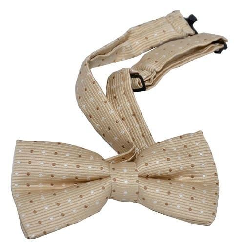 /D/o/Dotted-Bow-Tie---Light-Brown-7686798_1.jpg