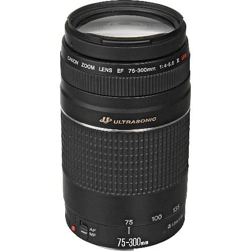 /E/F/EF-75-300mm-f-4-5-6-III-USM-Lens-6677536.jpg