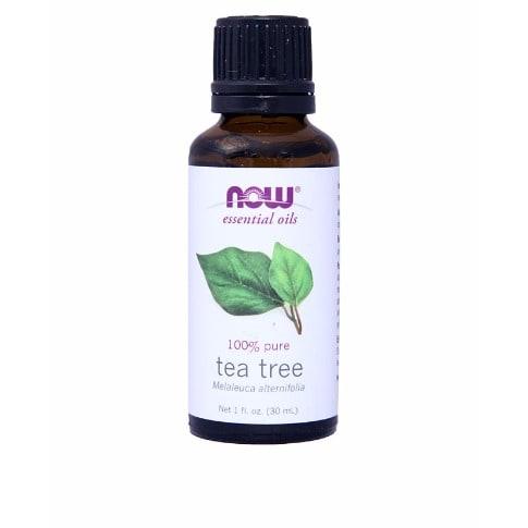 /E/s/Essential-Oils---Tea-Tree---1-fl-oz-7556924.jpg