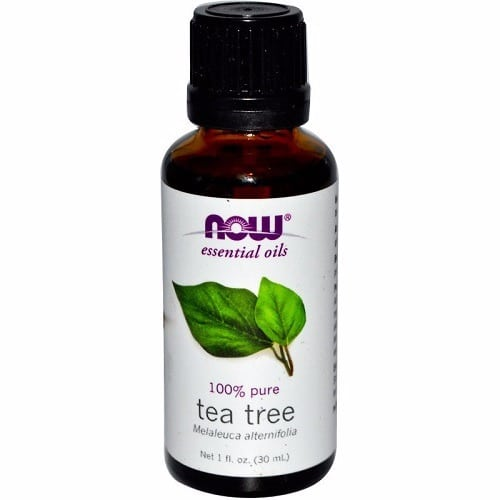 /E/s/Essential-Oils-Tea-Tree---1-fl-oz---30-ml-7774278.jpg