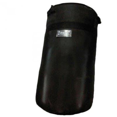 /E/v/Everlast-Professional-Punching-Bag-5987097_1.jpg
