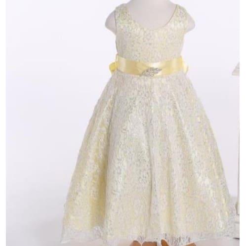 f00b84891d813 Flower Girls Lace Knot Belt Dress - Champagne Gold | Konga Online ...