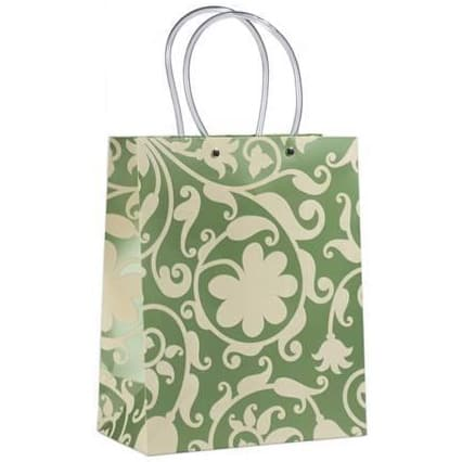 /G/i/Gift-Bags---Large---Carton---Kalistto-Green-8079928_1.jpg