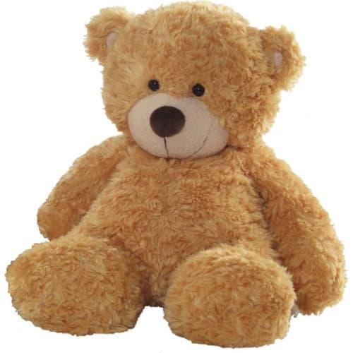 /G/i/Gift-Honey-Teddy-Bear-6094233.jpg