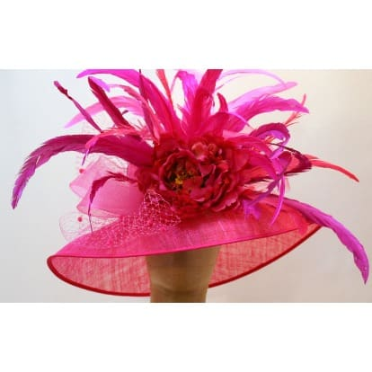 /H/o/Hot-Pink-Hat-with-Feathers-6386051_2.jpg