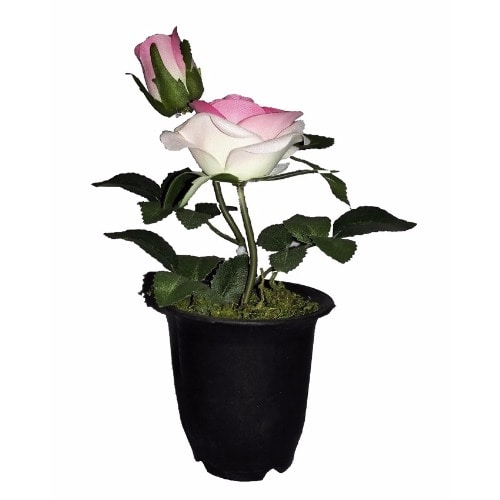 /I/n/Individual-Artificial-Potted-Rose-22cm---Pink-5993993_1.jpg