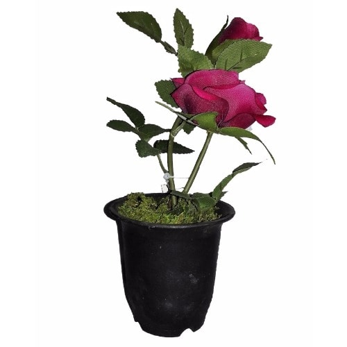 /I/n/Individual-Artificial-Potted-Rose-22cm---Red-5993962_1.jpg