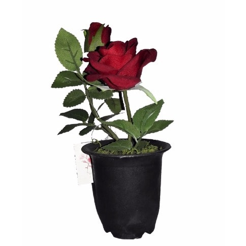 /I/n/Individual-Artificial-Potted-Rose-22cm---Scarlet-Red-5987358_1.jpg