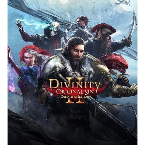 Divinity Original Sin 2-Divinity Edition PC Game