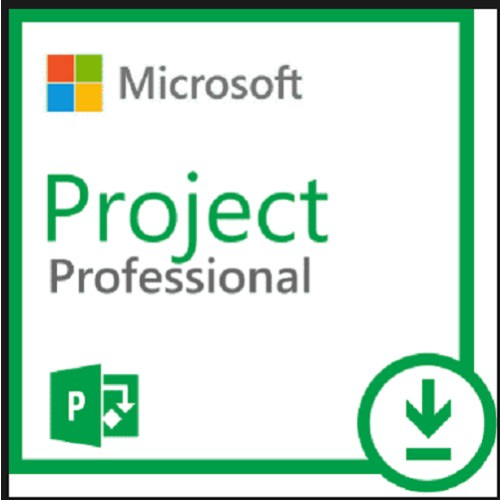Microsoft Project Professional 2019 For Windows Pc Download Version Konga Online Shopping