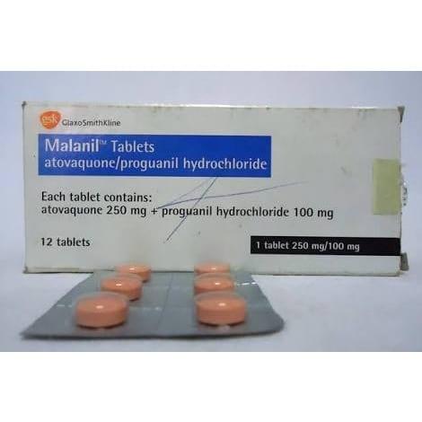/M/a/Malanil---Adult-6024965_2.jpg