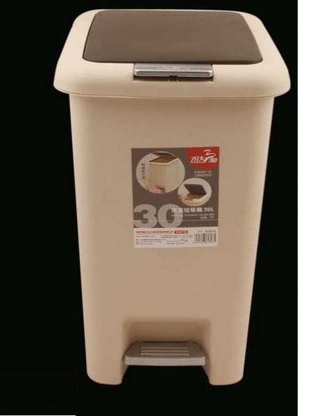 /P/e/Pedal-and-Push-up-Bin-30-Litres-7110589_2.jpg