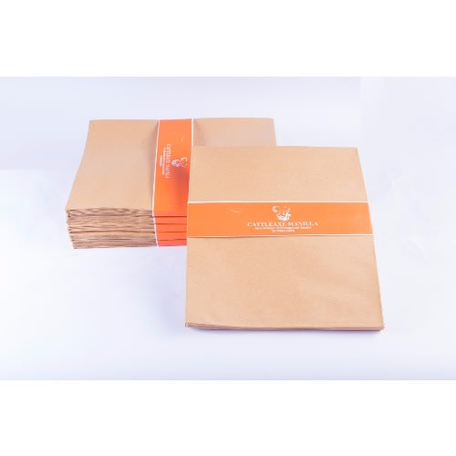 /P/e/Peel-Seal-Brown-Envelopes---500pieces---10-X-8-Inches---Quarto-Size-7608037_1.jpg