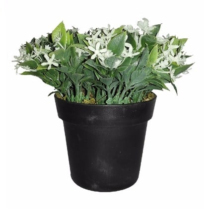 /P/l/Plante-Artificial-Plant-in-Black-Pot---14cm-8075680.jpg