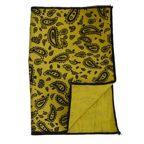 /P/o/Pocket-Square--Paisley-Pattern--7294459_1.jpg
