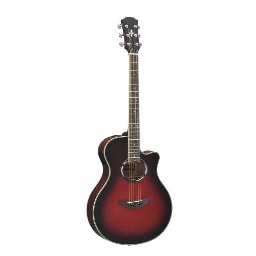 /P/r/Pro-Semi-Acoustic-Guitar-7790040.jpg