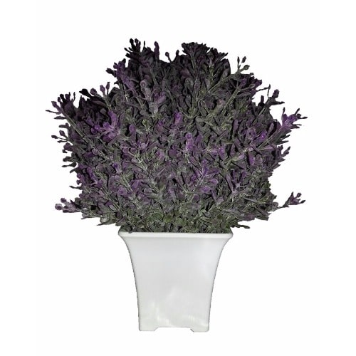 /S/i/Silky-Soft-Janice-Artificial-Flower-in-White-Pot---21cm-8075729.jpg