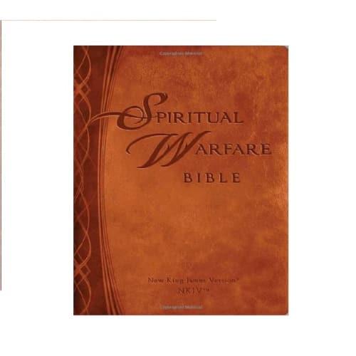Download PDF Spiritual Warfare Bible: New King James Version