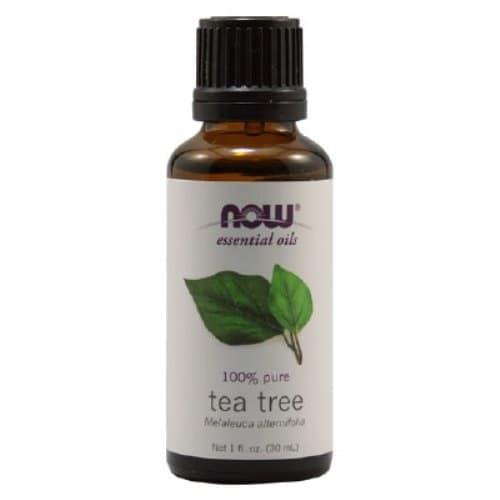 /T/e/Tea-Tree-Essential-Oil-7043003_3.jpg