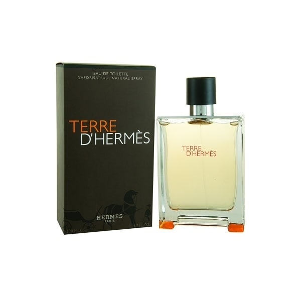 /T/e/Terre-D-Hermes-for-Men-EDT-100ml-7512574.jpg