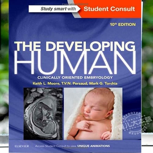 /T/h/The-Developing-Human-Clinically-Oriented-Embryology-10th-Ed--4859336.jpg