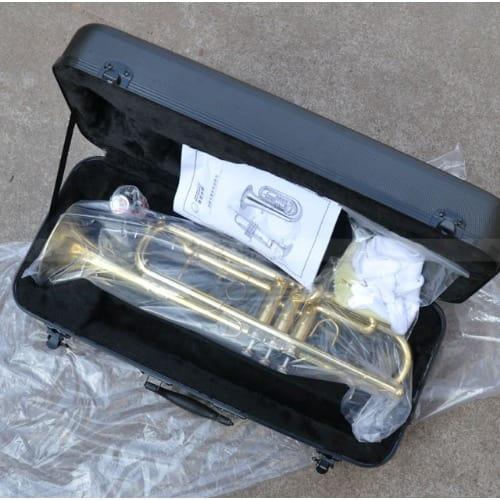 /T/r/Trumpet-7532362_1.jpg