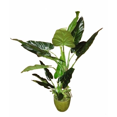 /V/e/Venice-Potted-Artificial-Philodendron-with-Dirt---108cm-7974202.jpg