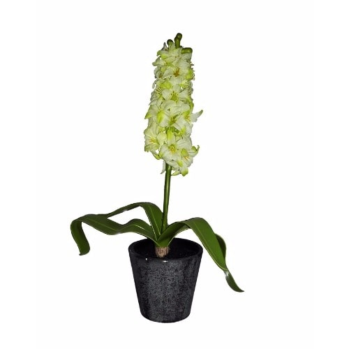 /V/i/Vino-Artificial-Plant-in-Black-Pot-35cm---White-8075760.jpg
