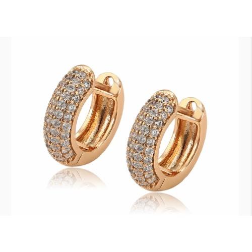 36ecc1ce0d04d Gold-plated Hoops Earring