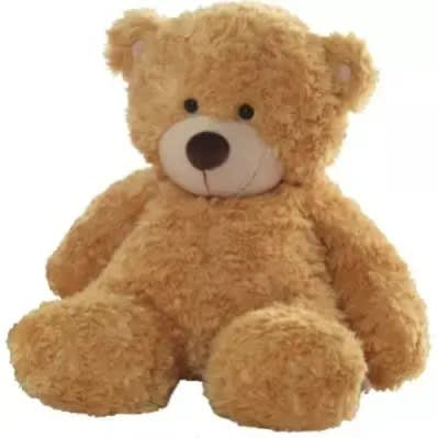 Teddy Bear Gift Honey 30 Inch